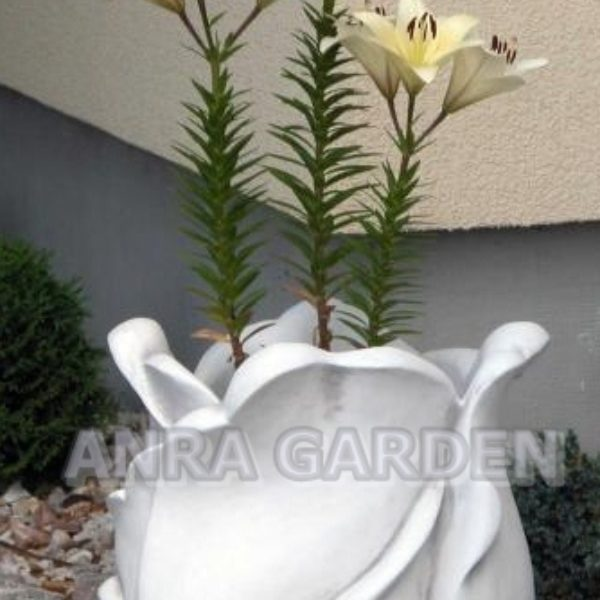 DONICA S104066 ANRA GARDEN 1