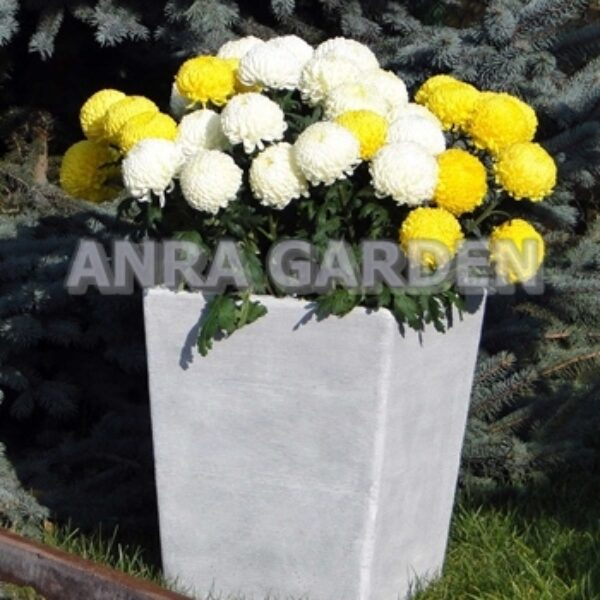 DONICA S204058 ANRA GARDEN 1