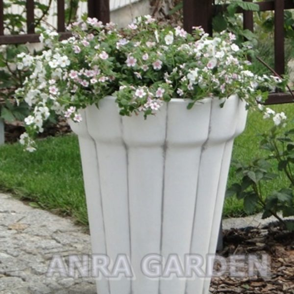 DONICA S204062 ANRA GARDEN 1