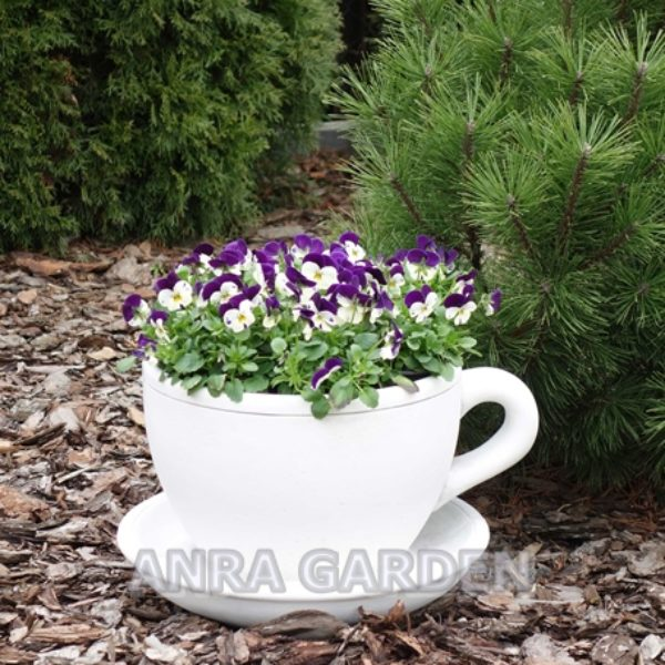 DONICA S204086 ANRA GARDEN -1