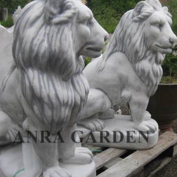 komplet lwów XL 1