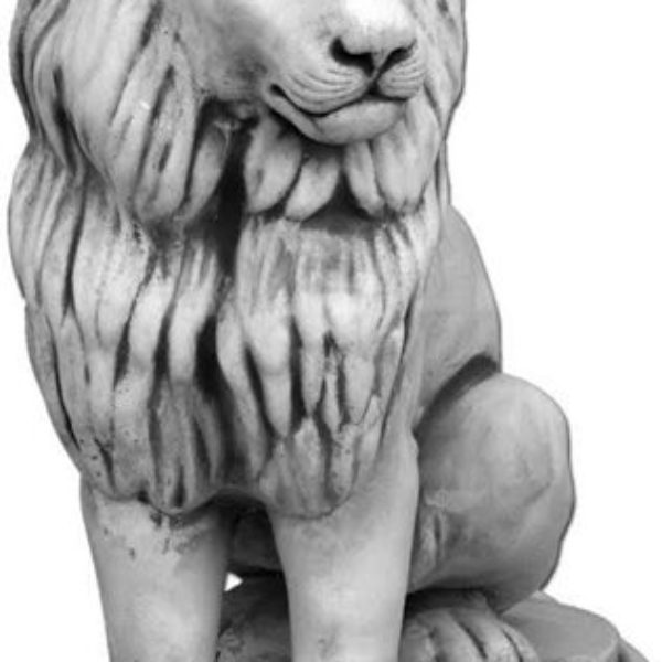 mały lew ANRA GARDEN